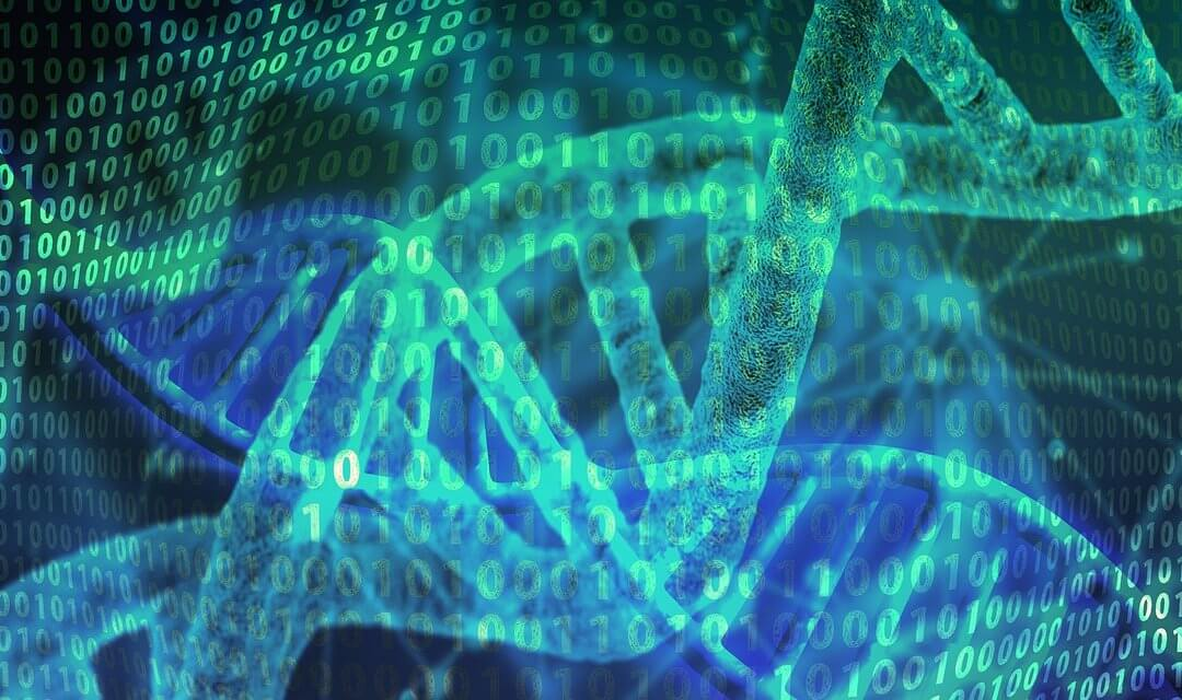 A kvantum mező, a DNS és a HANGok kapcsolata